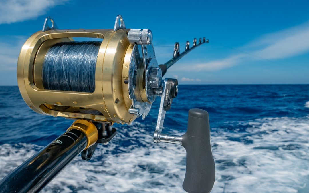Denne sommer er den oplagte mulighed for at prøve kræfter med lystfiskeri- Køb en fiskestang